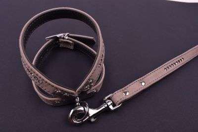 Leather collars and leashes